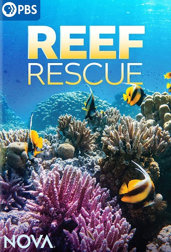 Reef Rescue cover