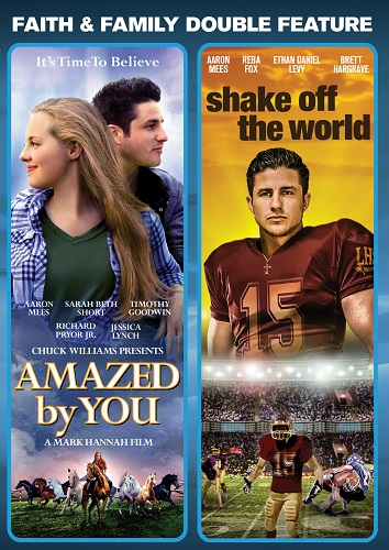 Amazed By You / Shake Off the World cover