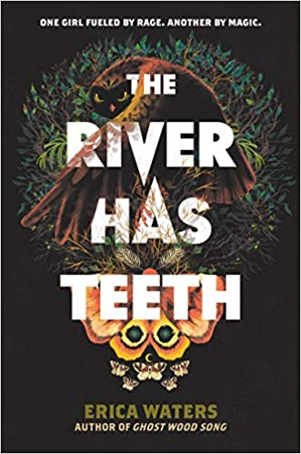 The River Has Teeth cover