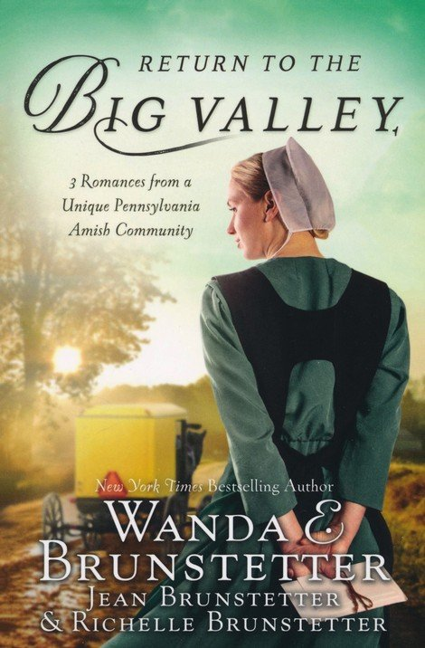 Return to the Big Valley cover