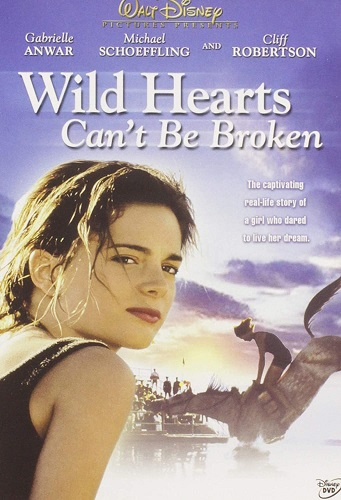 Wild Hearts Can't Be Broken cover